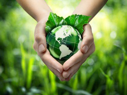 mãos a segurar planeta verde