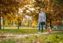 Renovar guarda-roupa de outono