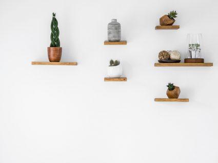 prateleiras penduradas com plantas