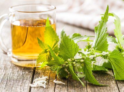 benefícios do chá de madressilva