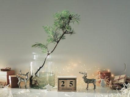 elementos decorativos de natal simples