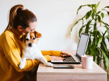 mulher com cão ao colo a trabalhar em casa a usufruir da flexibilidade no trabalho