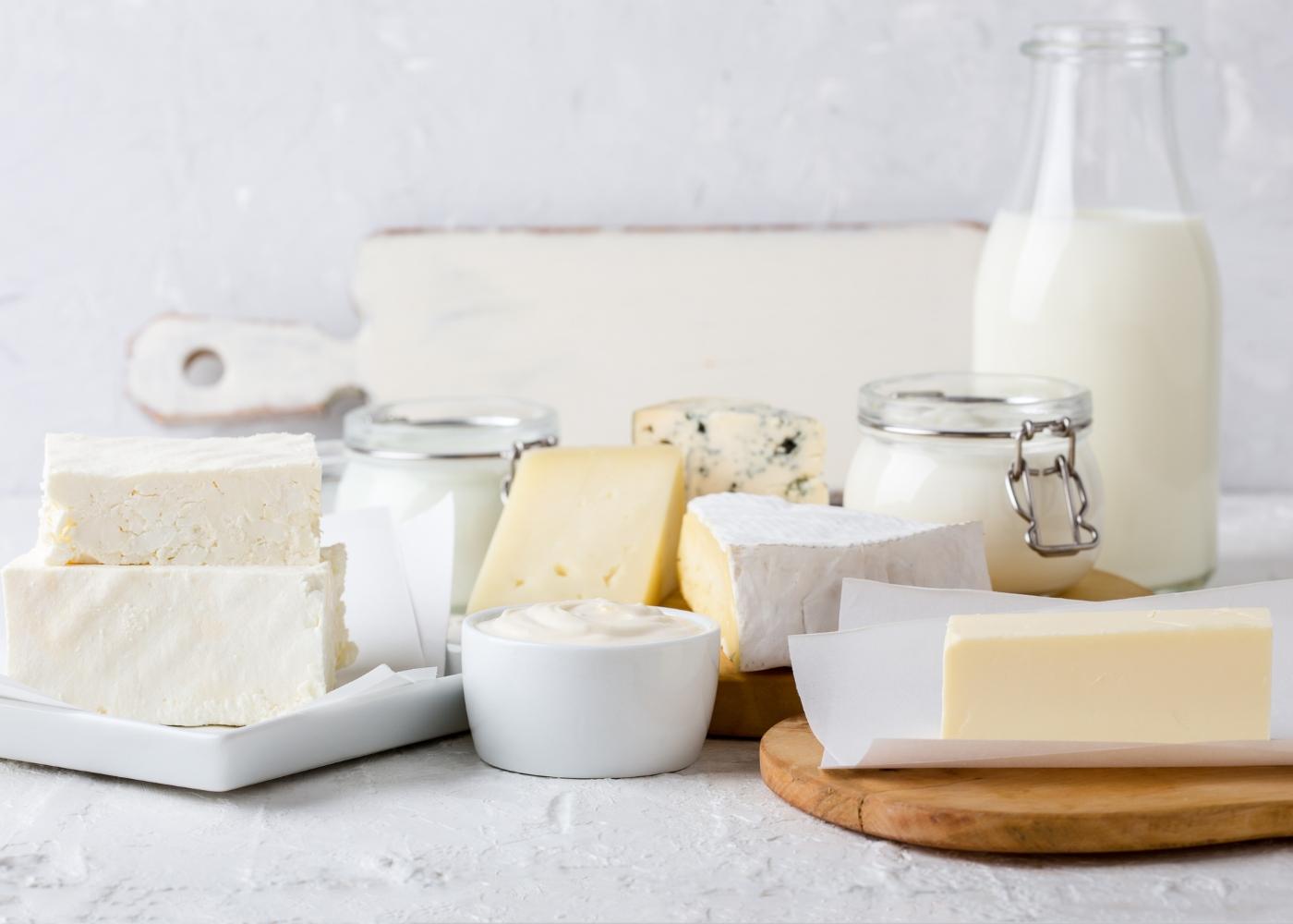 leite e vários produtos lácteos