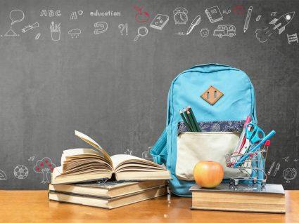 mochilas escolares ergonómicas