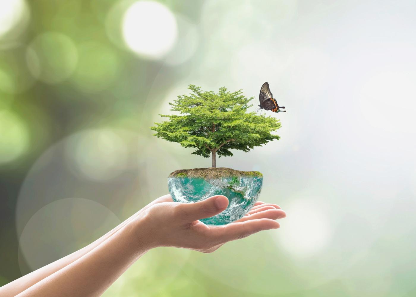 mão a segurar um objeto metade globo, metade árvore