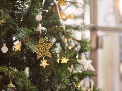 árvore de natal enfeitada