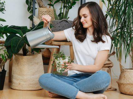 mulher a cuidar de plantas que diminuem humidade