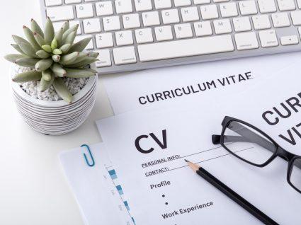 modelos de Curriculum Vitae impressos
