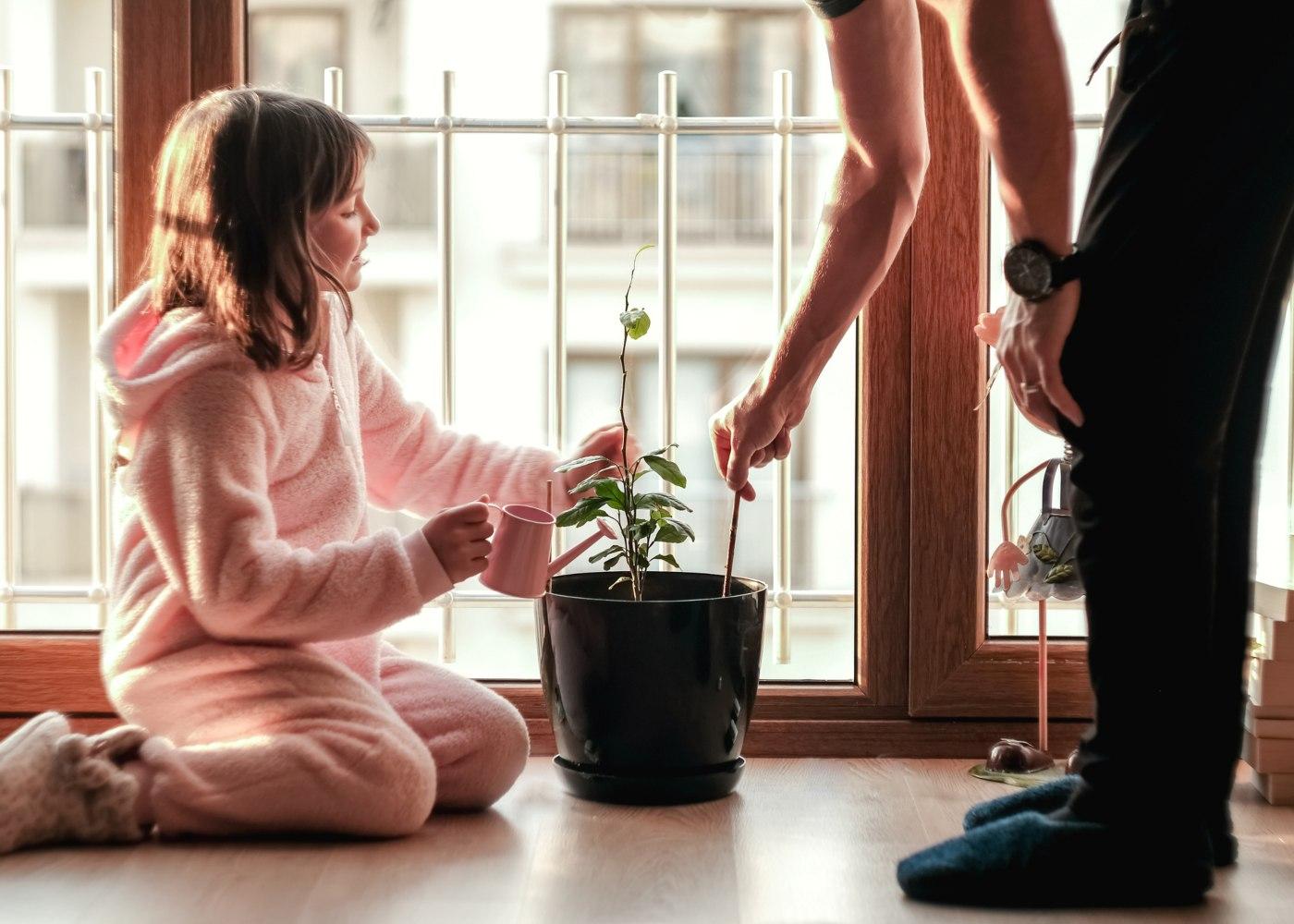 criança a plantar com pai