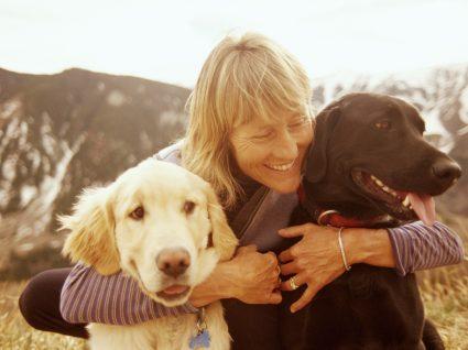 Escolher cão ou cadela