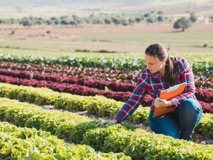 estatuto de agricultura familiar