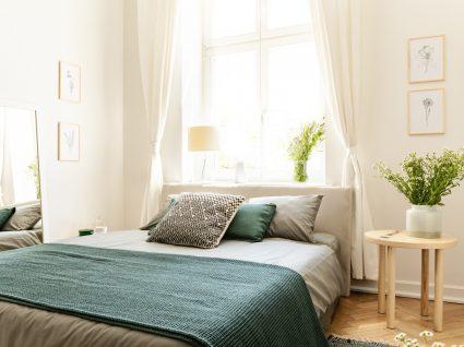 quarto decorado com plantas
