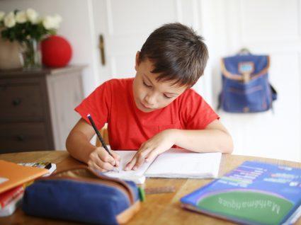criança a estudar com manuais escolares gratuitos