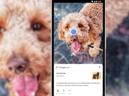 Google Lens: a ferramenta de pesquisa visual que parece vir do futuro