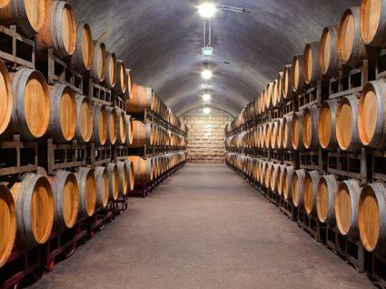 9 caves de vinho do Porto para conhecer este verão
