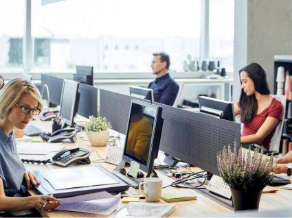 Poder disciplinar no trabalho: o que diz a lei?