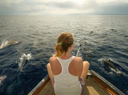 5 incríveis passeios de barco para ver golfinhos em Portugal