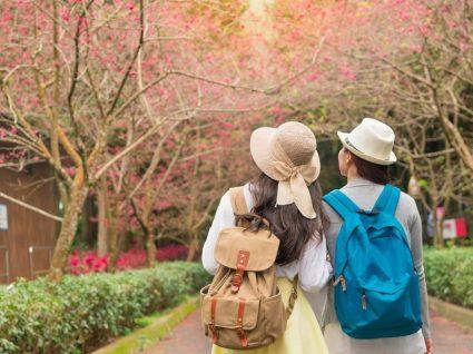Estudar no Japão: veja o programa de bolsas de estudo em universidades