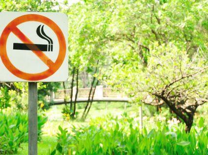 Lei do Tabaco: multas por incumprimento podem ir até 750€