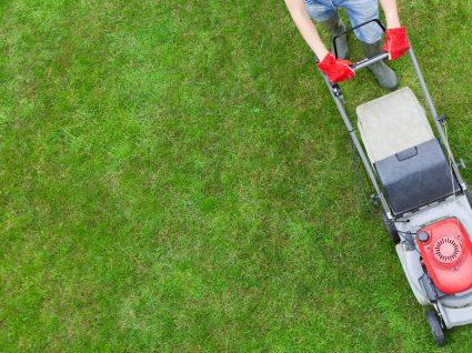 6 truques infalíveis para cortar a relva e fazer inveja aos vizinhos