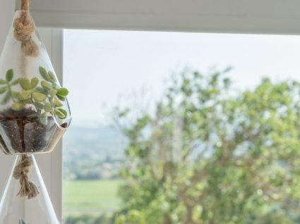 Vaso suspenso: 6 ideias criativas para embelezar o seu lar