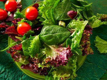 7 diferentes tipos de alface para as suas diferentes saladas