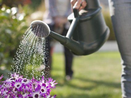 10 ideias simples para reutilizar água