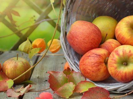 Receitas boas para comer maçã diariamente (e deliciar-se)