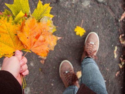 Precisa de motivos para viajar no outono? Temos 6 para lhe apresentar