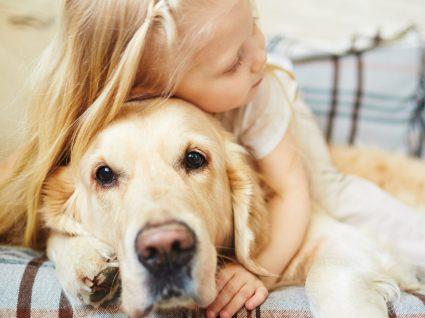Saiba como calcular os anos humanos do cão