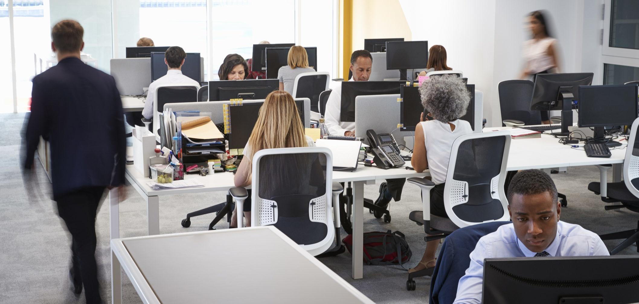 funcionários a trabalhar num escritório open space