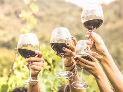 Conheça 6 dos países com os melhores vinhos do mundo