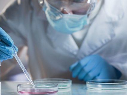Cientistas descobrem nas células humanas 'arma mortífera' contra cancro
