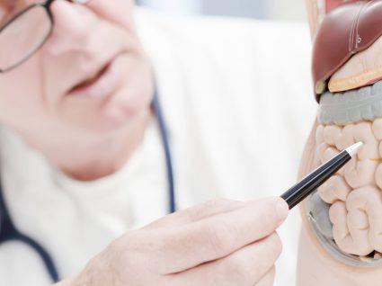Doença de Crohn: o que é, sintomas e tratamento