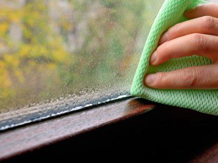 Como reduzir a humidade em casa? 7 dicas e conselhos práticos
