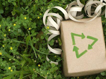 Natal amigo do ambiente: sugestões práticas que fazem a diferença