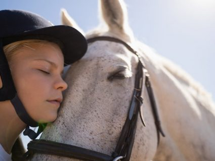 Zooterapia: saiba mais sobre a terapia assistida por animais