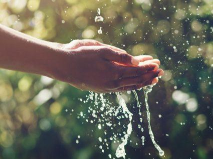 Como poupar água: 14 dicas para aplicar todos os dias