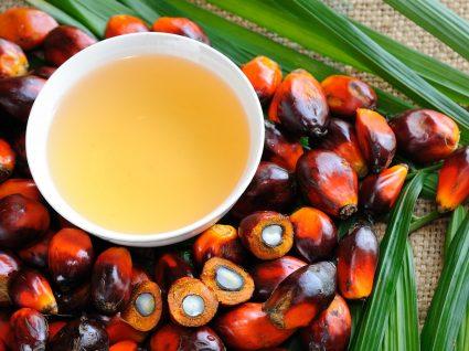 Óleo de palma: vantagens e desvantagens deste ingrediente