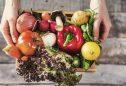 Plantar legumes em apartamento: 10 vegetais que crescem bem em vasos