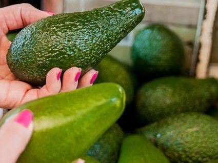 Como escolher abacate: dicas que não falham