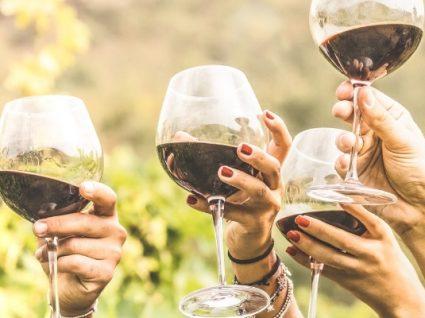 Conheça os vinhos portugueses que não vai querer perder em 2019