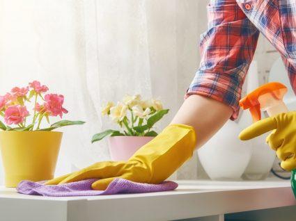 Checklist limpezas de primavera: inspiração Martha Stewart