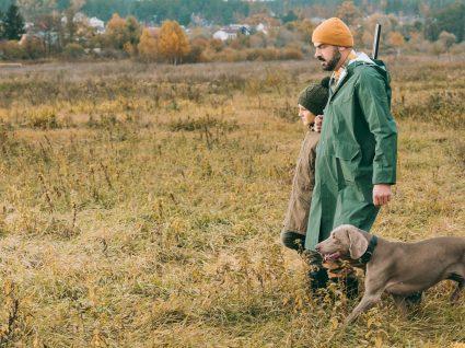 Seguro de caçadores: prevenir para não remediar