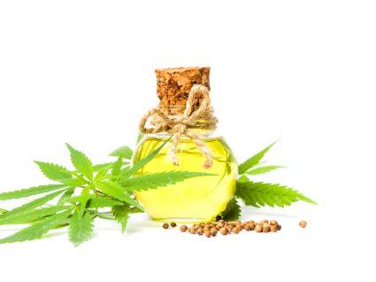 7 melhores produtos de beleza à base de cannabis