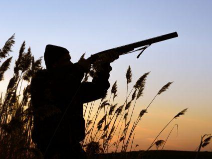Novo seguro de caçadores Aon com cobertura alargada: apenas 21€ por ano