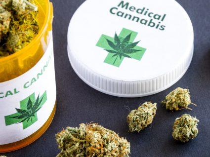 Canábis medicinal: conheça as aplicações terapêuticas