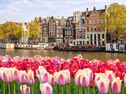 10 (excelentes) razões para ir a Amesterdão este ano