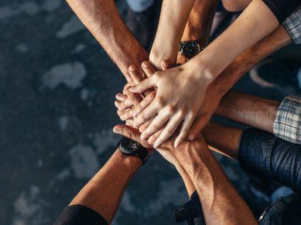 Carta Portuguesa para a Diversidade: o que é e para que serve