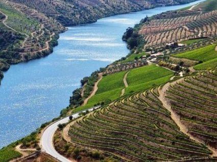Parque do Côa: uma viagem ao passado do Douro